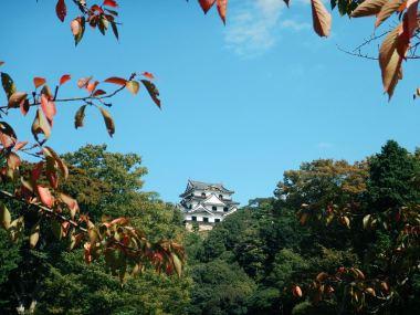 castello-hikone