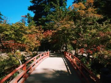 ponte-miyajima