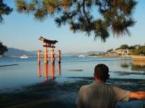 torii-rosso
