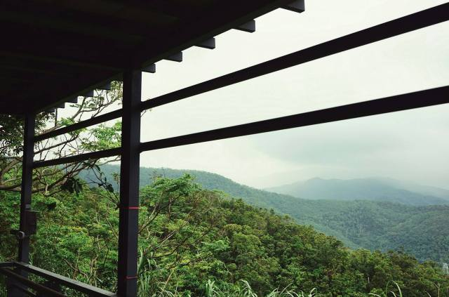 vista-sulla-giungla