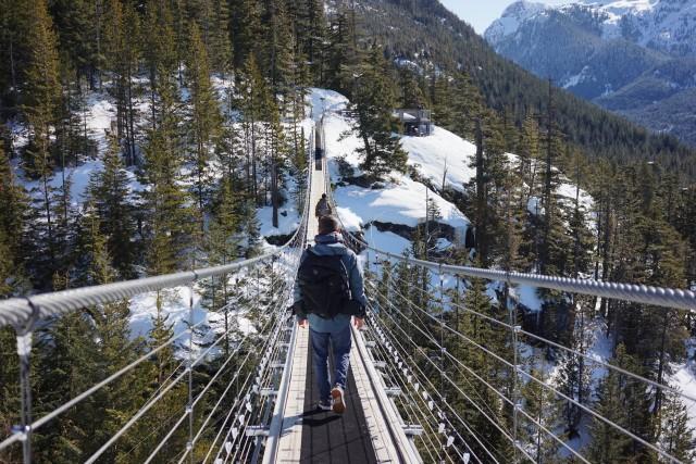Sky Pilot Mountain Bridge