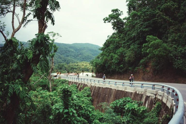 Foresta 4